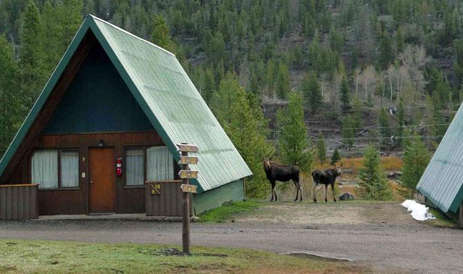 Yellowstone cabins wyoming lodging pahaska tepee resort wy for Cabins in wyoming near yellowstone